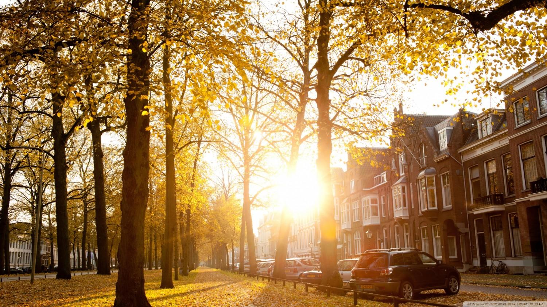 sunny_autumn_afternoon_in_utrecht-wallpaper-2560x1440